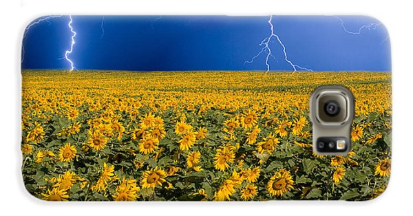 Sunflower Lightning Field  Galaxy S6 Case by James BO  Insogna