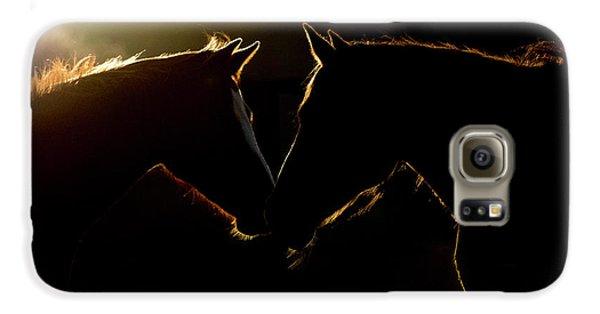Sunrise Companions Galaxy S6 Case