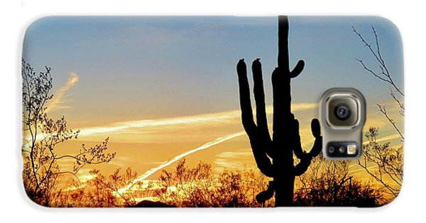 Sunset Saguaro In The Spring Galaxy S6 Case
