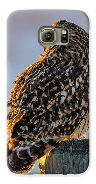Sunset Short-eared Owl Galaxy S6 Case