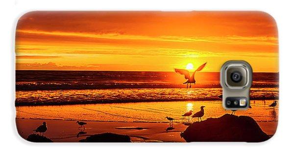 Sunset Surprise Pano Galaxy S6 Case