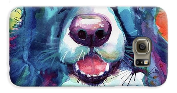 Colorful Galaxy S6 Case - Surprised Border Collie Watercolor by Svetlana Novikova