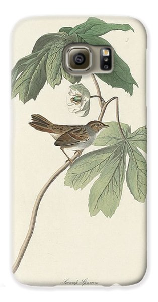 Swamp Sparrow Galaxy S6 Case by Anton Oreshkin