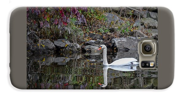 Swan In Autumn Reflections Galaxy S6 Case