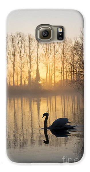 Swan Lake Galaxy S6 Case by Tim Gainey