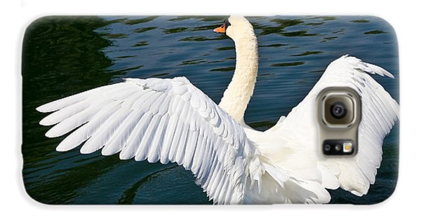 Swan Moment Galaxy S6 Case