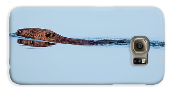 Swimming With The Beaver Galaxy S6 Case by Bill Wakeley