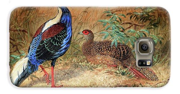 Swinhoe's Pheasant  Galaxy S6 Case by Joseph Wolf