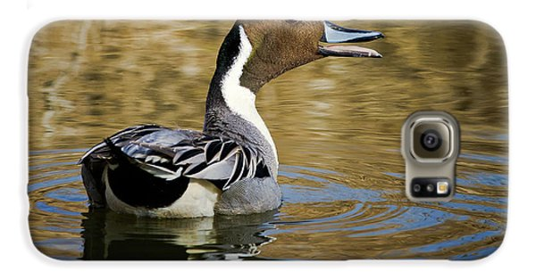 Talking Pintail Galaxy S6 Case
