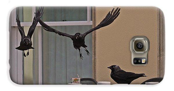 The Birds Galaxy S6 Case