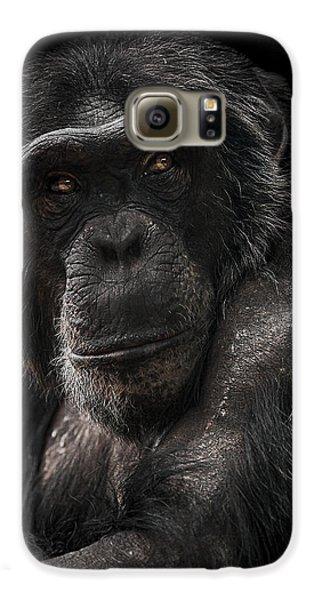 Ape Galaxy S6 Case - The Contender by Paul Neville