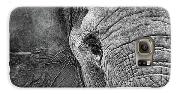 The Elephant In Black And White Galaxy S6 Case