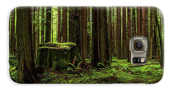 The Emerald Forest Galaxy S6 Case