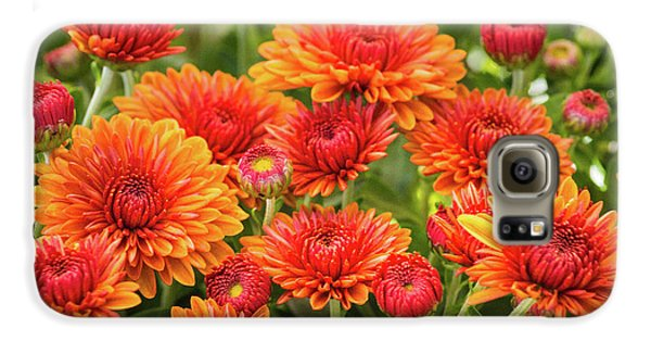 Galaxy S6 Case featuring the photograph The Fall Bloom by Bill Pevlor