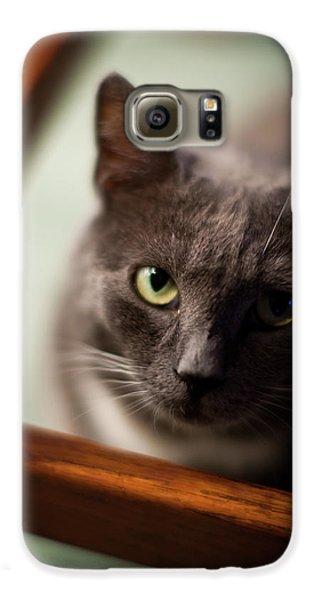 The Gaze Galaxy S6 Case