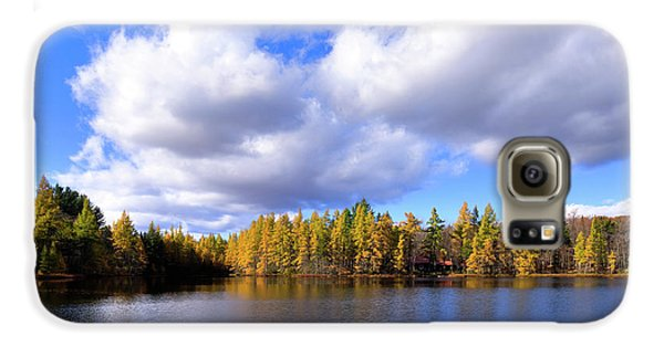 Galaxy S6 Case featuring the photograph The Golden Forest At Woodcraft by David Patterson