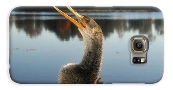 The Great Golden Crested Anhinga Galaxy S6 Case by David Lee Thompson