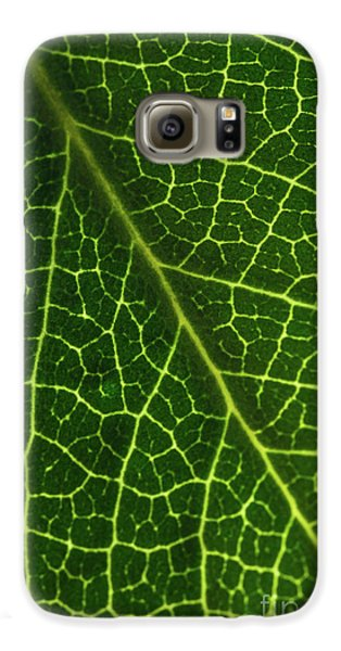 Galaxy S6 Case featuring the photograph The Green Network by Ana V Ramirez