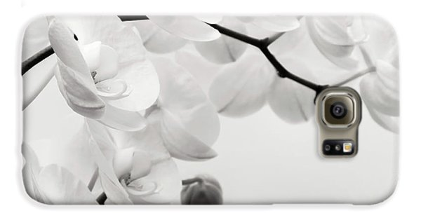 Orchid Galaxy S6 Case - The Last Orchid by Wim Lanclus