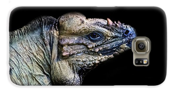 Salamanders Galaxy S6 Case - The Lizard King by Martin Newman