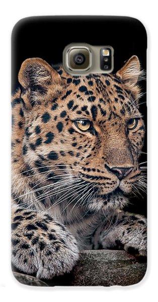 Leopard Galaxy S6 Case - The Night Watchman by Paul Neville