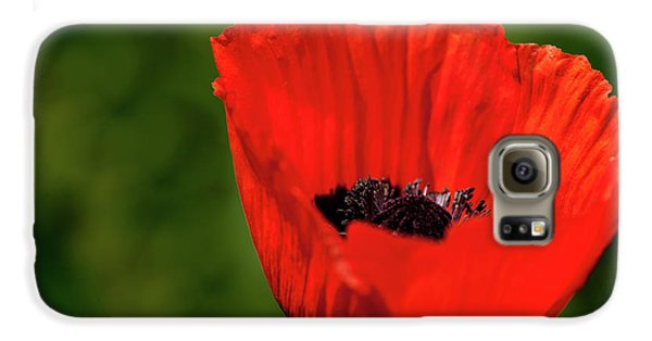 The Poppy Next Door Galaxy S6 Case by Onyonet  Photo Studios