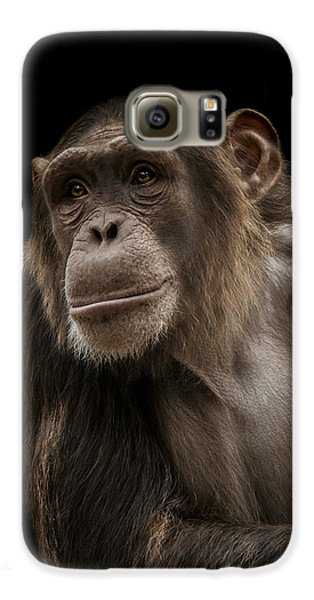 Ape Galaxy S6 Case - The Storyteller by Paul Neville