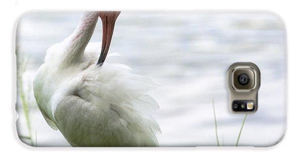 The White Ibis  Galaxy S6 Case by Saija  Lehtonen