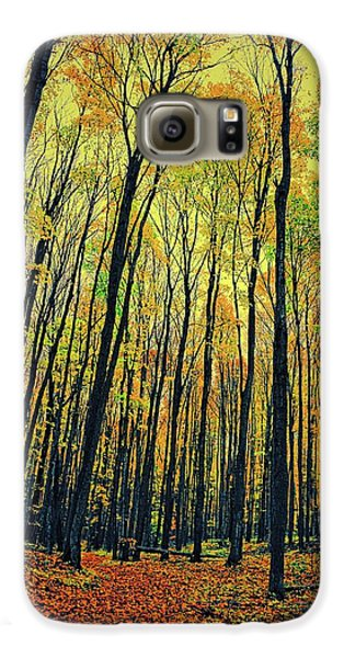 Galaxy S6 Case featuring the photograph The Woods In The North by Michelle Calkins