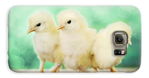 Chicken Galaxy S6 Case - Three Amigos by Amy Tyler