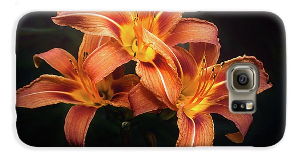 Lily Galaxy S6 Case - Three Lilies by Scott Norris