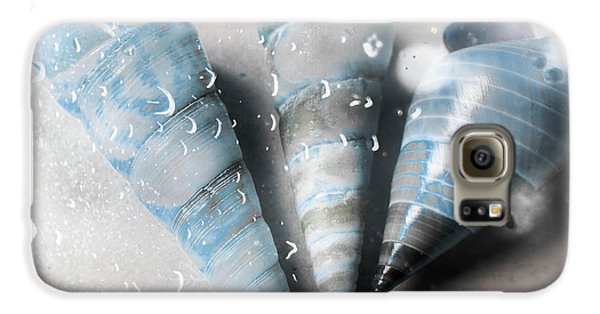 Trumpet Galaxy S6 Case - Three Little Trumpet Snail Shells Over Gray by Jorgo Photography - Wall Art Gallery