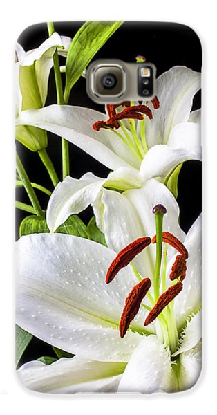 Three White Lilies Galaxy S6 Case by Garry Gay