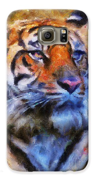 Tiger Portrait Samsung Galaxy Case by Jai Johnson
