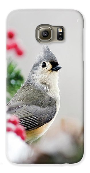 Galaxy S6 Case featuring the photograph Titmouse Bird Portrait by Christina Rollo