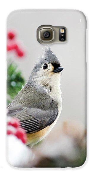 Titmouse Bird Portrait Galaxy S6 Case by Christina Rollo