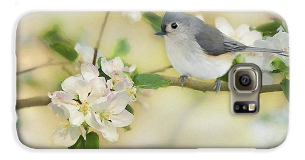 Titmouse Galaxy S6 Case - Titmouse In Blossoms 2 by Lori Deiter