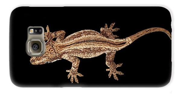 Top View Of Gargoyle Gecko, Rhacodactylus Auriculatus Staring Isolated On Black Background. Native T Galaxy S6 Case