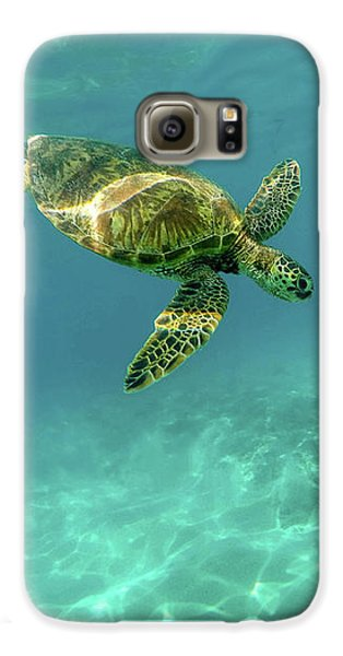 Tortoise Galaxy S6 Case by Happy Home Artistry