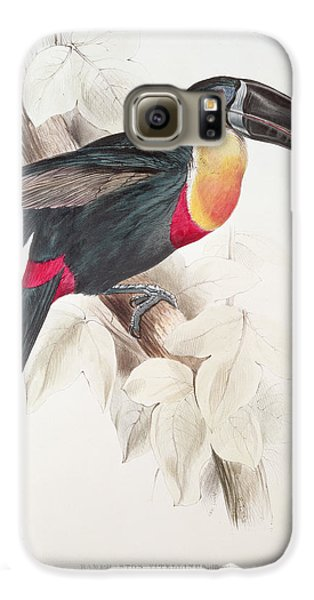 Toucan Galaxy S6 Case by Edward Lear