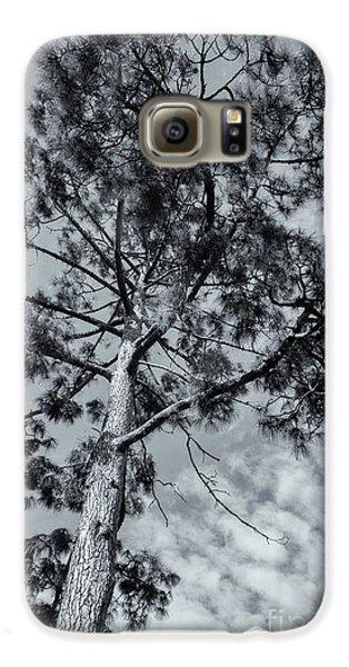 Galaxy S6 Case featuring the photograph Towering by Linda Lees