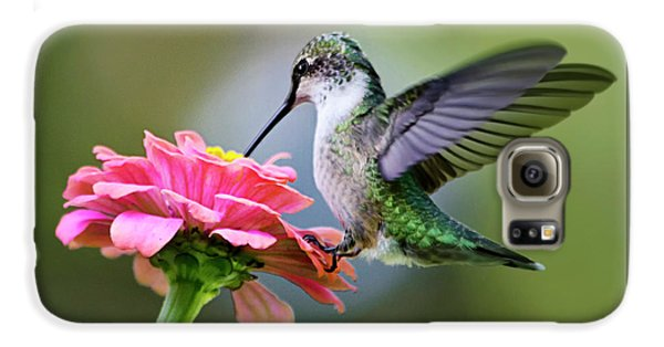 Tranquil Joy Hummingbird Square Galaxy S6 Case