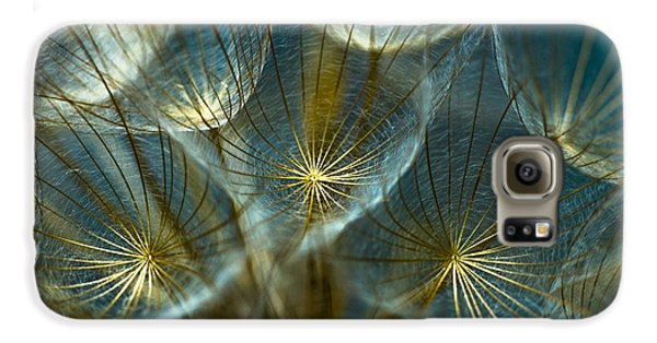 Translucid Dandelions Galaxy S6 Case