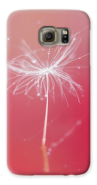 Trapped In Vain Galaxy S6 Case