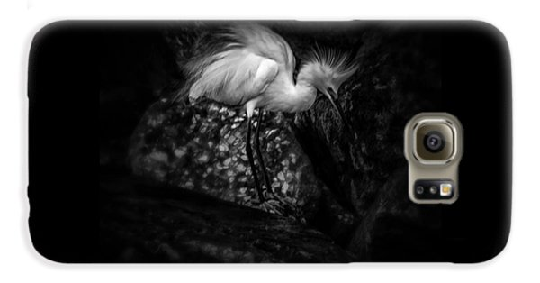 Stork Galaxy S6 Case - Tread Lightly by Marvin Spates