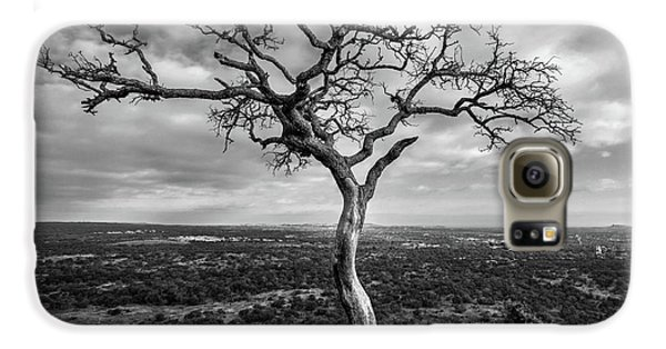 Tree On Enchanted Rock In Black And White Galaxy S6 Case