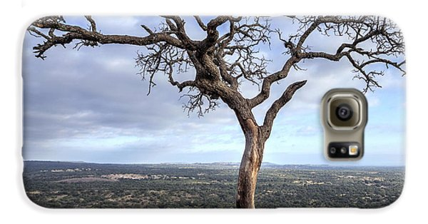 Tree On Enchanted Rock - Square Galaxy S6 Case
