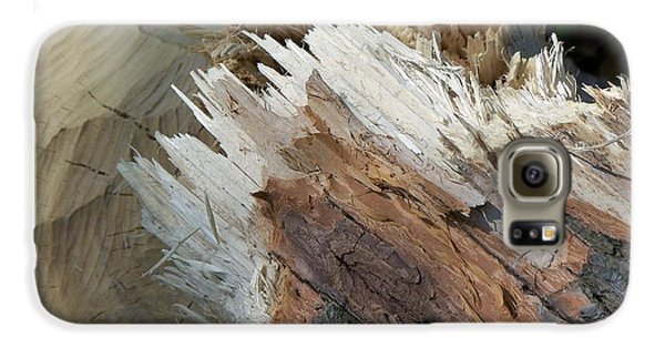 Tree Stump Galaxy S6 Case