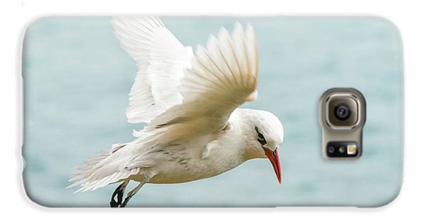 Tropic Bird 4 Galaxy S6 Case