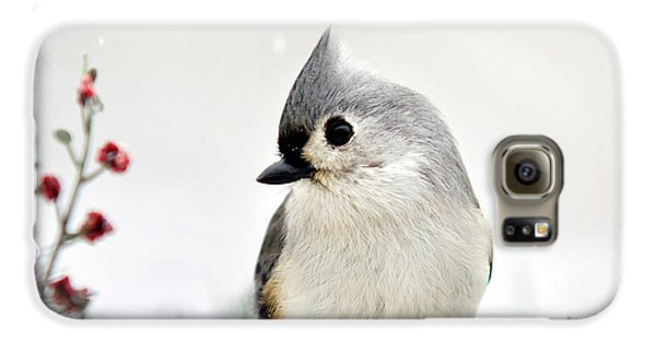 Titmouse Galaxy S6 Case - Tufted Titmouse Square by Christina Rollo